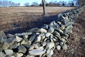 Geog-JamestownFarmWall