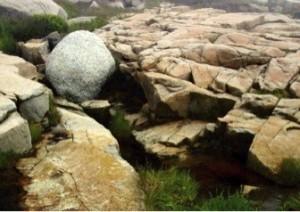 Rock-BoulderOnGraniteAcadia