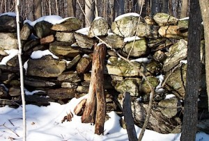 Classic historic fieldstone wall, also called the farmer's wall, the thrown wall, the tossed wall, the pasture wall, and the tumbled wall.